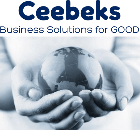 Financial Planning | Ceebeks Business Solutions for GOOD