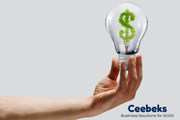 How to Improve Your Business' Cashflow - Ceebeks Business Solutions for Good