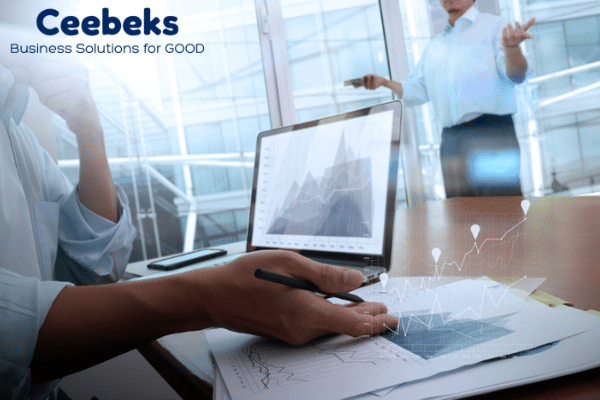 Managing a share portfolio - Ceebeks Business Solutions for GOOD